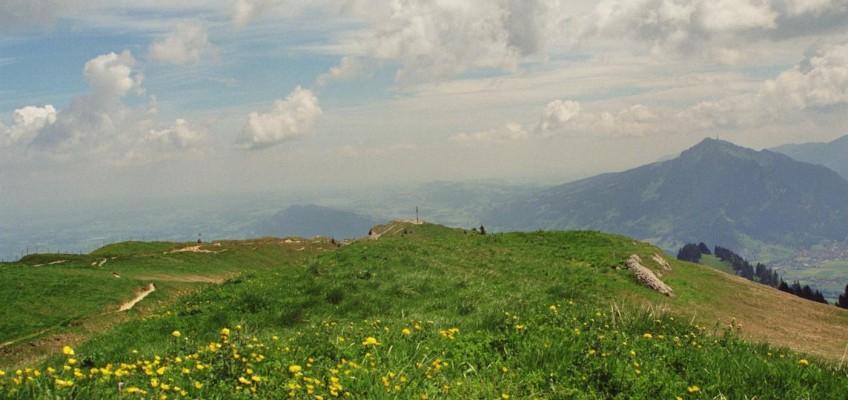 Steineberg Gipfel
