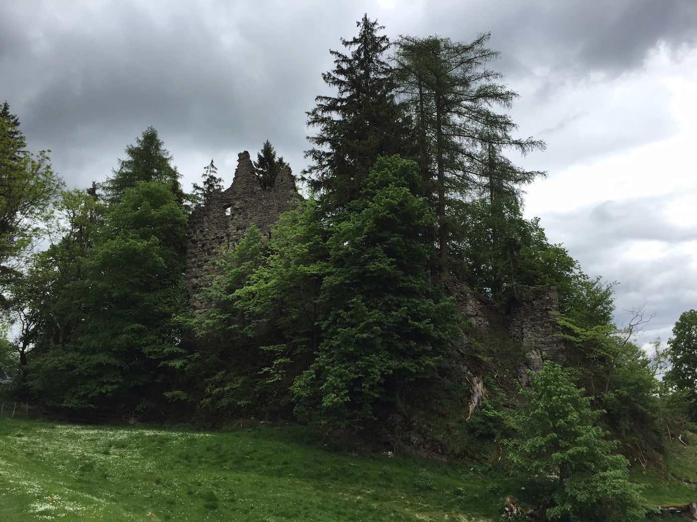 Die Ruine Burgberg