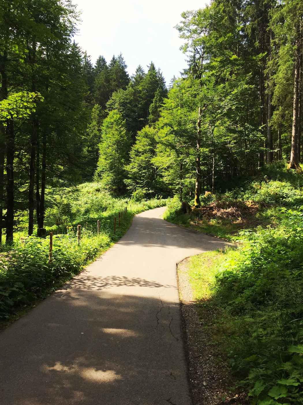 Anfahrt ins Rappenalptal