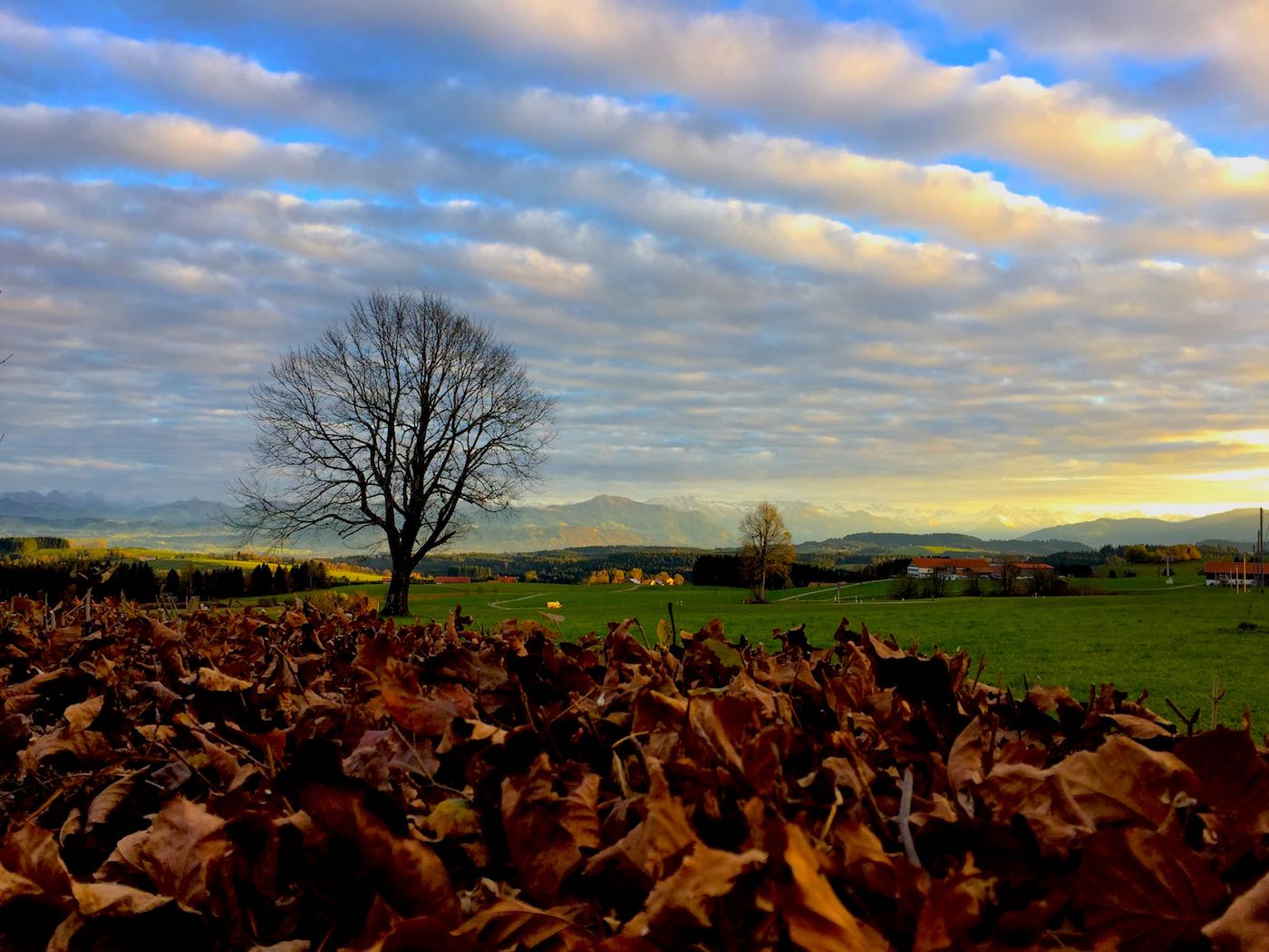 Herbststimmung - der Allgäuer Hauptalpenkamm aus Richtung Eschach