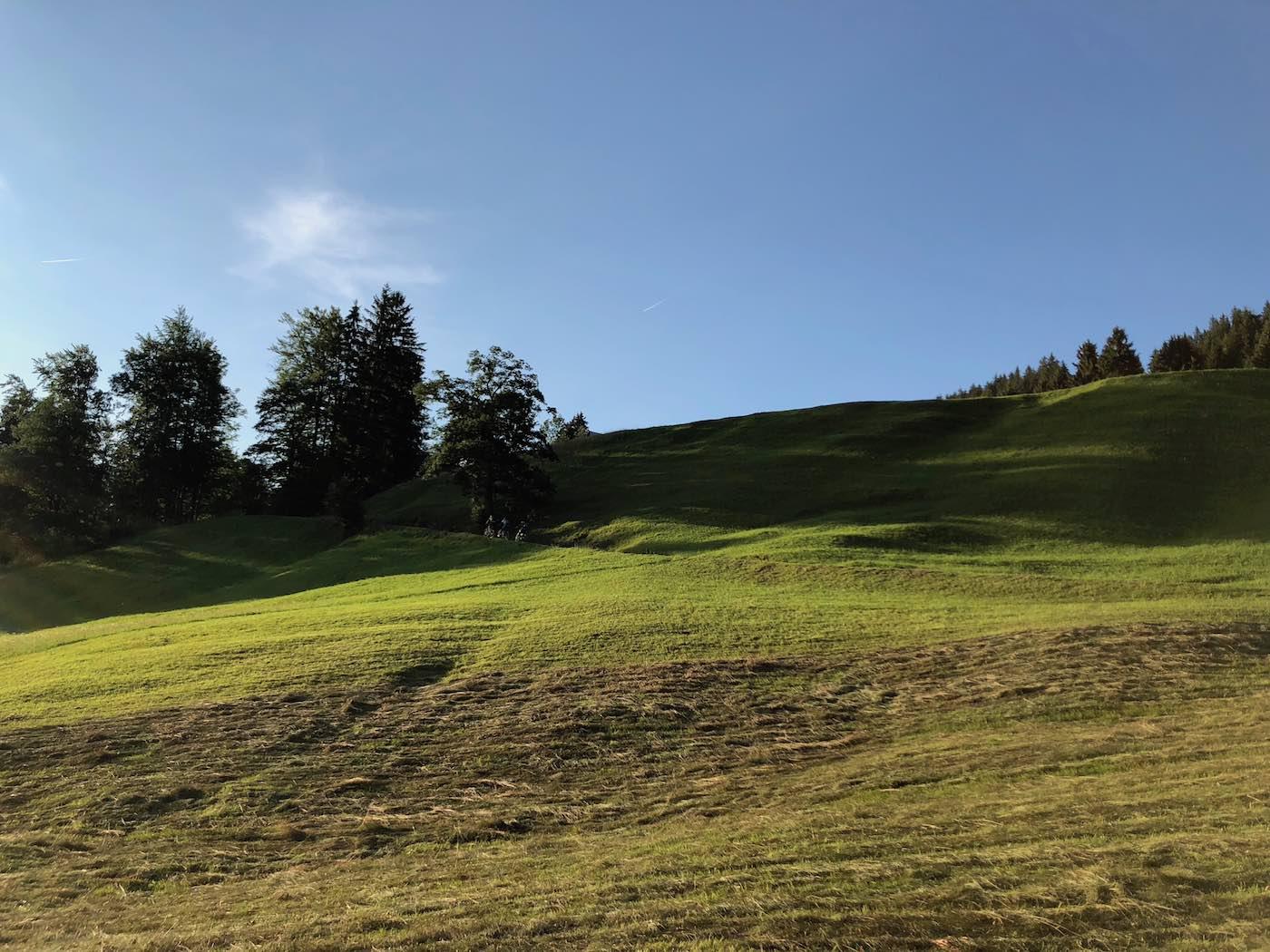 Die Wiesen oberhalb von Unterried