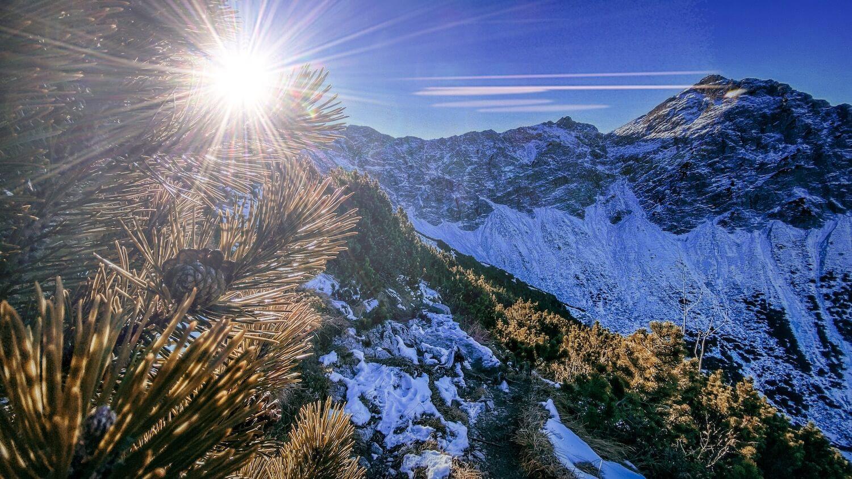 Kurz vor dem Breitenberg Gipfel - Blick zurück zur Rotspitz
